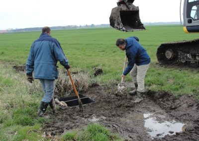 Landschaftspflegeverband Landkreis Augsburg e.V. Amphibienprojekt