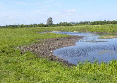 Landschaftspflegeverband Landkreis Augsburg e.V. Flachmulden-Biotop