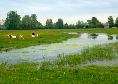Landschaftspflegeverband Landkreis Augsburg e.V. Biotoperweiterungen 2004