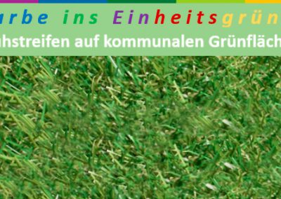 LPV-Projekt Farbe ins Einheitsgrün – Infos zur Projektrunde 2019