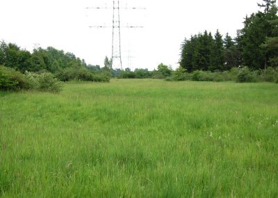 Landschaftspflegeverband Landkreis Augsburg e.V. Lechheideverband
