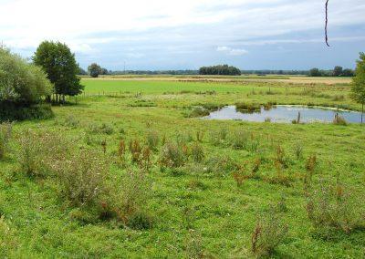 Landschaftspflegeverband Landkreis Augsburg e.V. Quelltopf