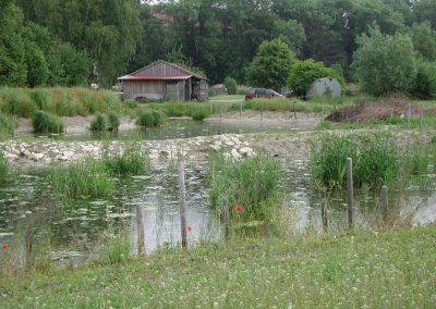 Landschaftspflegeverband Landkreis Augsburg e.V. Schilfklärbecken