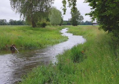 Landschaftspflegeverband Landkreis Augsburg e.V. Schwarzbach 2016