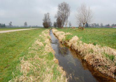 Landschaftspflegeverband Landkreis Augsburg e.V. Schwarzbach vorher